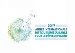 logo année internationale developpement