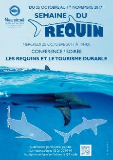 semaine du requin
